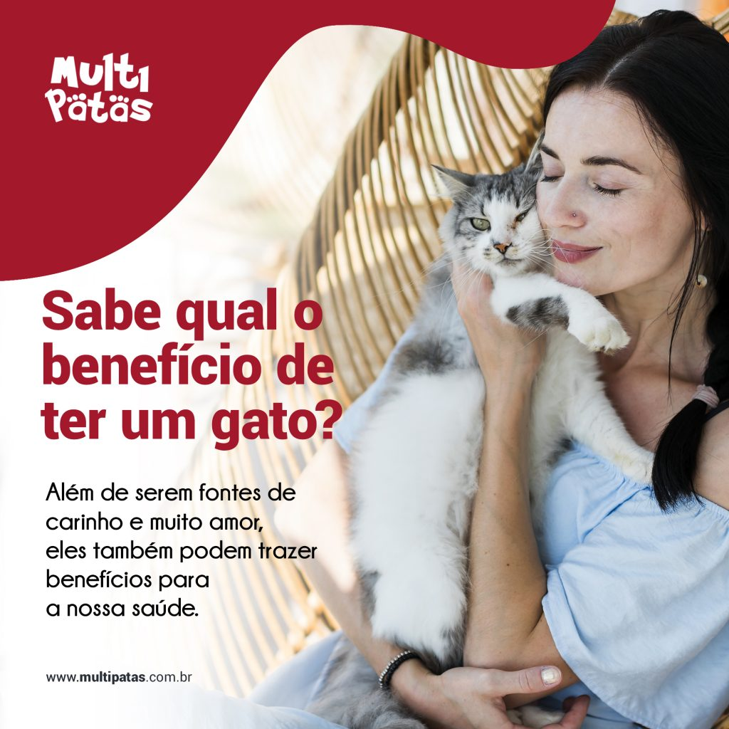 Benefícios de ter um gato